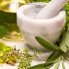 Energy Drink Herbal Ingredients: Are They Really As Healthy As They Say?